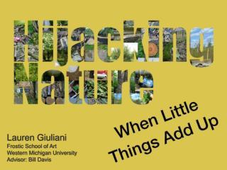 Lauren Giuliani Frostic School of Art Western Michigan University Advisor: Bill Davis