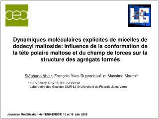 St�phane Abel + , Fran � ois-Yves Dupradeau ?  et Massimo Marchi +