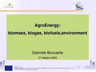 AgroEnergy:  biomass, biogas, biofuels,environment Gabriele Boccasile 27 ottobre 2008