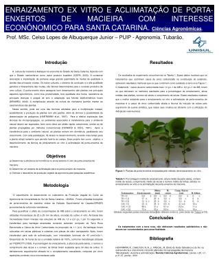 Prof. MSc. Celso Lopes de Albuquerque Junior – PUIP - Agronomia. Tubarão.