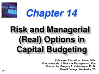 Risk and Managerial Real Options in Capital Budgeting
