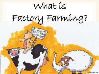 What is  F actory  F arming?
