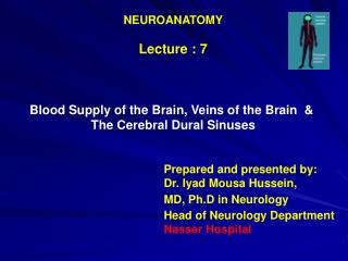 NEUROANATOMY Lecture : 7 Blood Supply of the Brain, Veins of the Brain  &