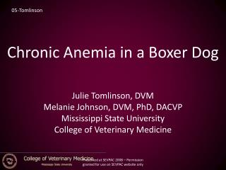 Chronic Anemia in a Boxer Dog