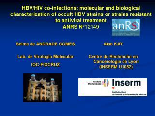Selma de ANDRADE GOMES Lab. de Virologia Molecular IOC-FIOCRUZ