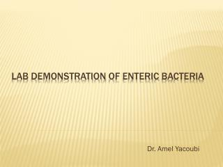 Lab Demonstration  of  Enteric Bacteria