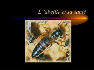 L��abeille et sa sant�