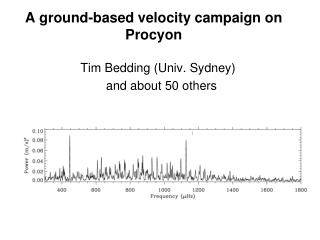 A ground-based velocity campaign on Procyon