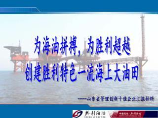 ---- 山东省管理创新十佳企业汇报材料