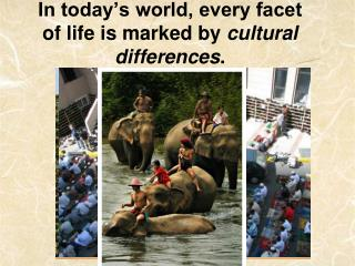 In today�s world, every facet of life is marked by  cultural differences .