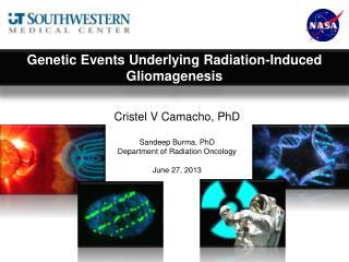 Cristel V Camacho, PhD Sandeep  Burma,  PhD Department of Radiation Oncology June 27, 2013