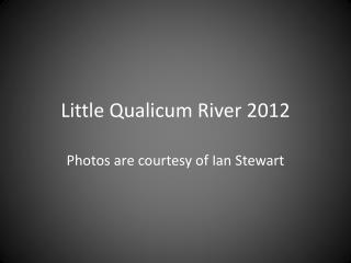 Little  Qualicum  River 2012