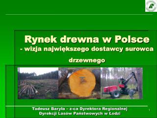 Rynek drewna w Polsce - wizja najwi?kszego dostawcy surowca drzewnego