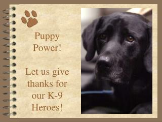 Puppy Power! Let us give thanks for our K-9 Heroes!