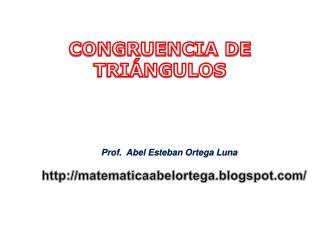 Prof.  Abel Esteban Ortega Luna