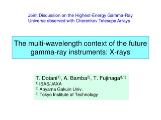 The multi-wavelength context of the future gamma-ray instruments: X-rays