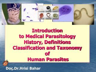 Do�.Dr.Hrisi Bahar
