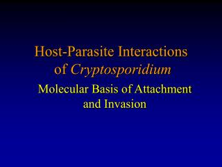 Host-Parasite Interactions of  Cryptosporidium
