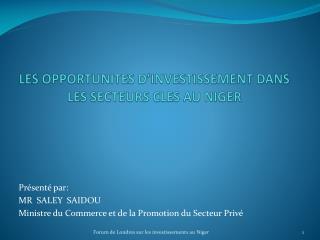 LES OPPORTUNITES D'INVESTISSEMENT DANS LES SECTEURS CLES AU NIGER