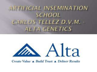 ARTIFICIAL INSEMINATION SCHOOL CARLOS TELLEZ D.V.M. - ALTA GENETICS