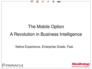 The Mobile Option A Revolution in Business Intelligence