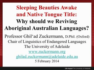 Professor Ghil'ad Zuckermann,  D.Phil. (Oxford)  Chair of Linguistics of Endangered Languages