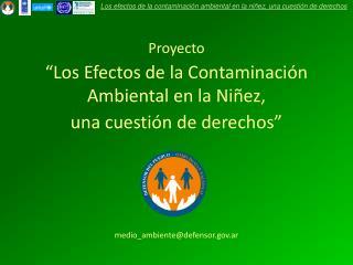 """Proyecto """"Los Efectos de la Contaminación Ambiental en la Niñez,  una cuestión de derechos"""""""