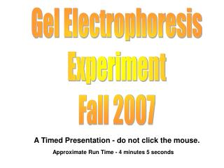 Gel Electrophoresis Experiment Fall 2007