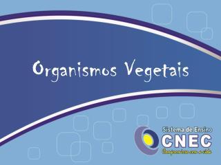 Organismos Vegetais
