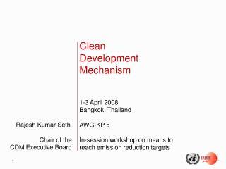 Rajesh Kumar Sethi Chair of the CDM Executive Board