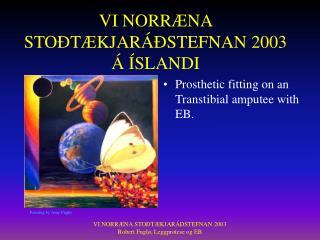 VI NORRÆNA STOÐTÆKJARÁÐSTEFNAN 2003 Á ÍSLANDI