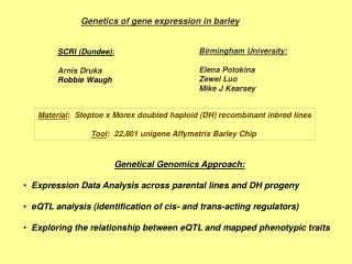 Genetics of gene expression in barley