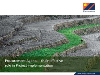 Procurement  Agents – their effective role in Project implementation