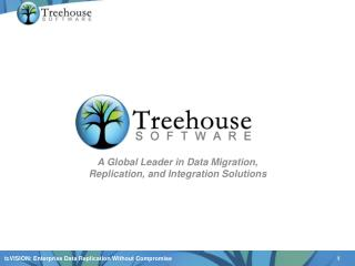 A Global Leader in Data Migration, Replication, and Integration Solutions