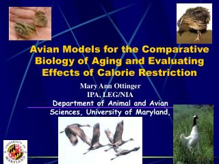 Avian Models for the Comparative Biology of Aging and Evaluating Effects of Calorie Restriction