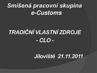 Smíšená pracovní skupina   e-Customs