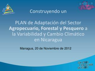 Managua, 20 de Noviembre de 2012