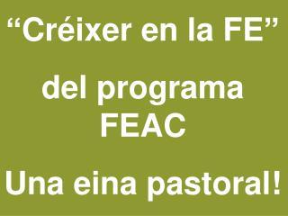 """""""Créixer en la FE""""  del programa FEAC Una eina pastoral!"""