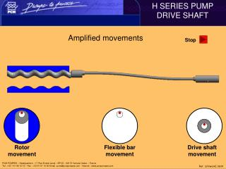 Amplified movements