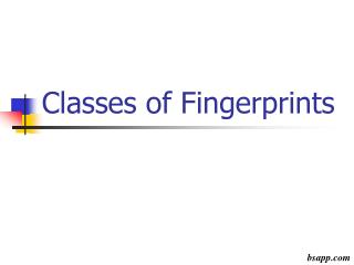 Classes of Fingerprints