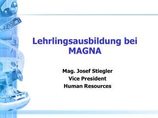 Lehrlingsausbildung bei  MAGNA