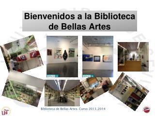 Bienvenidos a la Biblioteca de Bellas Artes