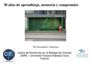 Institut de Recherche sur la Biologie de l'Insecte CNRS – Université François Rabelais Tours