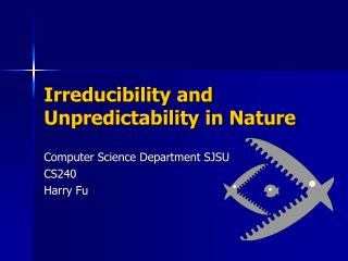 Irreducibility and Unpredictability in Nature