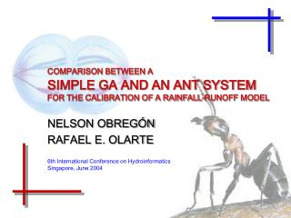 COMPARISON BETWEEN A SIMPLE GA AND AN ANT SYSTEM  FOR THE CALIBRATION OF A RAINFALL-RUNOFF MODEL