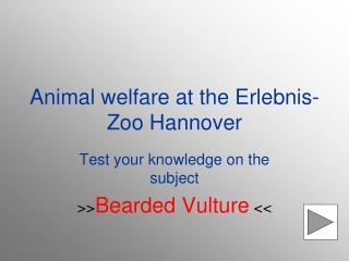 Animal welfare at the Erlebnis-Zoo Hannover