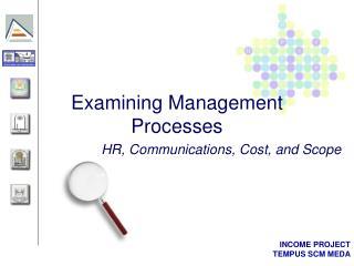 Examining Management Processes