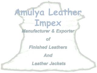 Amulya Leather Impex