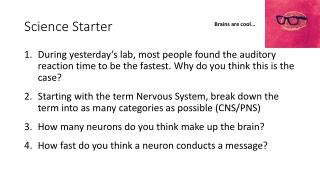 Unit 3: The Nervous System