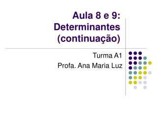 Aula 8 e 9: Determinantes (continua��o)